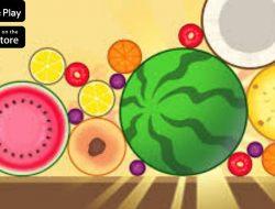 Download Little Game Synthetic Watermelon Apk Terbaru