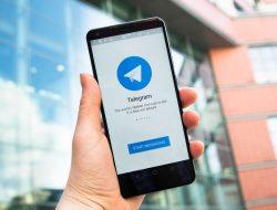 Apa Arti SLR di RP Telegram? Ini Dia Penjelasannya
