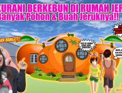 ID Rumah Jeruk Sakura School Simulator